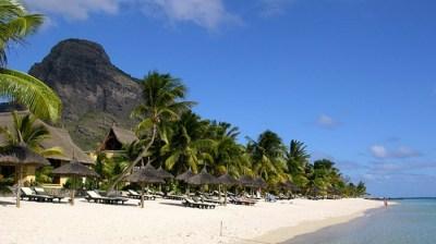 Bois Des Amourettes, Mauritius