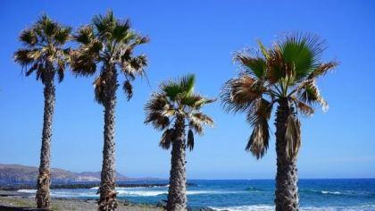 Playa de Las Americas, Hiszpania