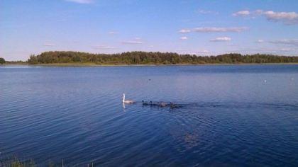Jezioro Luki, Ukraina