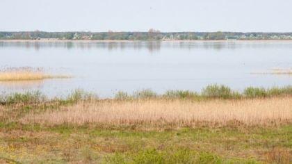 Озеро Пулемецкое, Украина