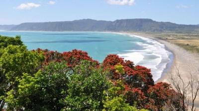 Gisborne (New Zealand)